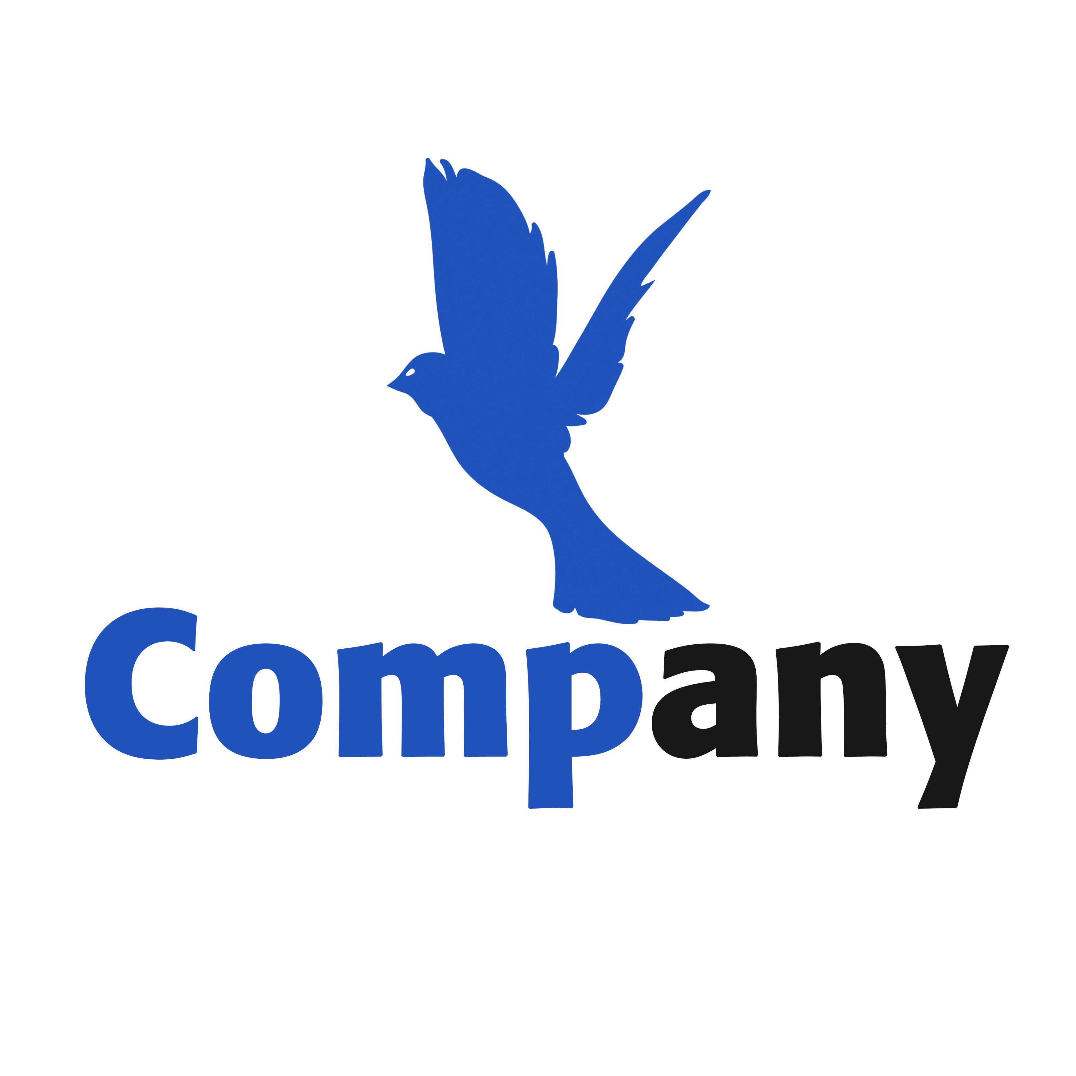Birdy logo