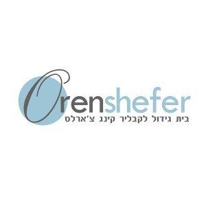 לוגו Oren shefer