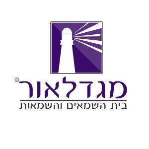 לוגו לחברת שמאים – מגדלאור