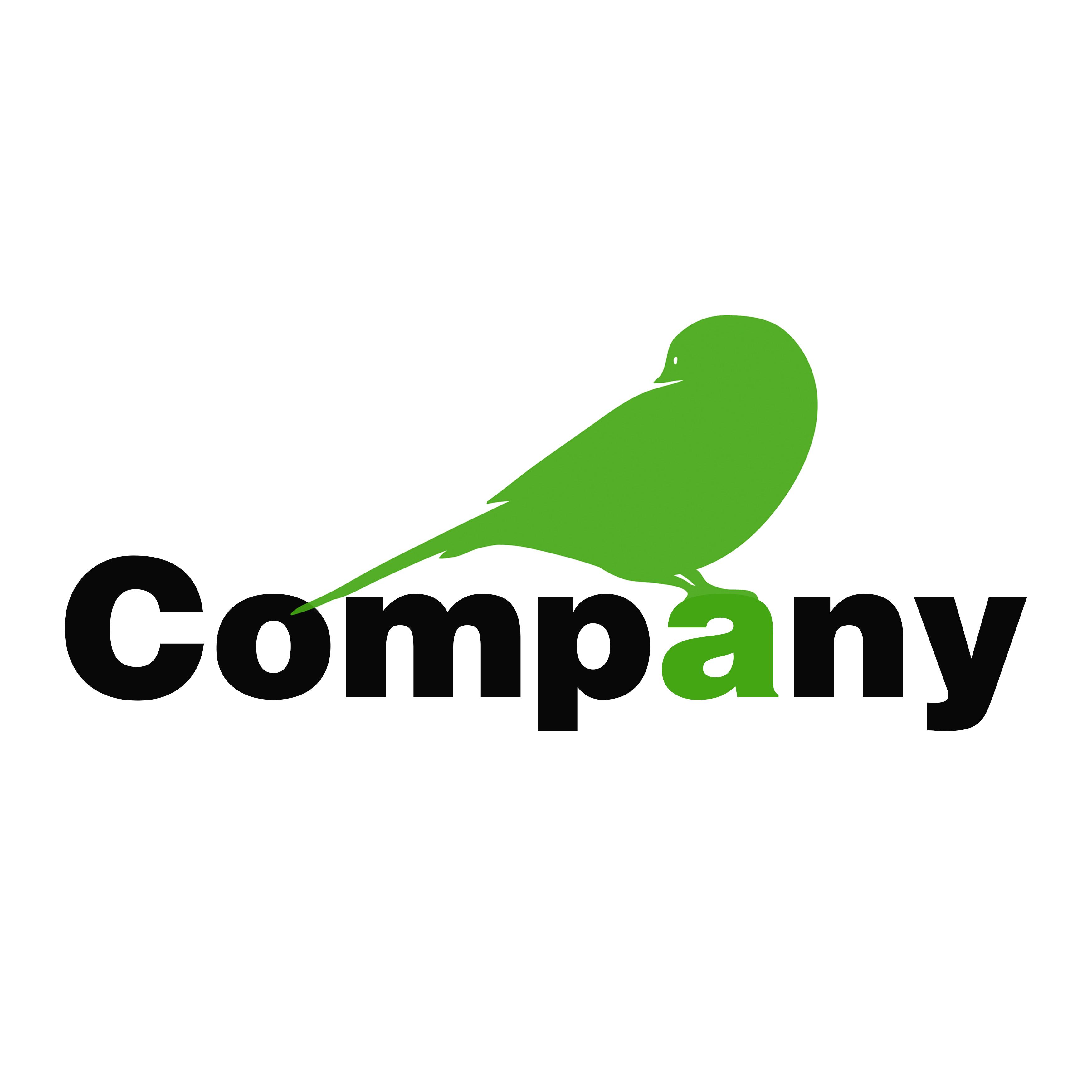 לוגו Little Bird