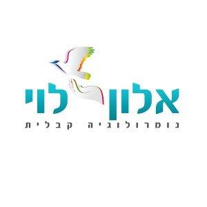 לוגו נומרולוגיה קבלית