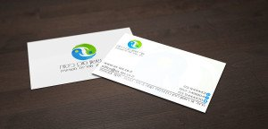 לוגו 5024 מעצבת כרטיסי ביקור